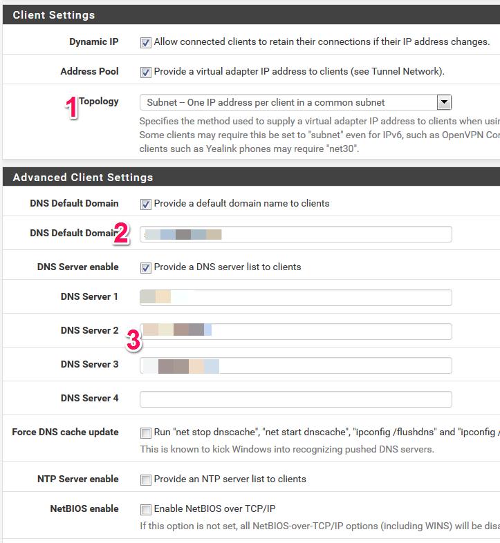 Einstellungen des Kunden-Netzes in der pfsense für den OpenVPN-Tunnel