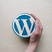 WordPress wird global eingesetzt