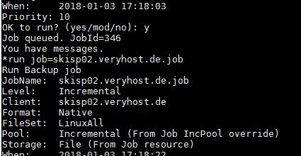 Den Backup-Job für den Linux-Client starten